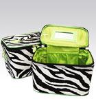 2 Zebra Cases Green Inside